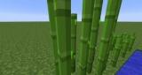 Сахарный тростник в Minecraft — для чего нужен? Как в